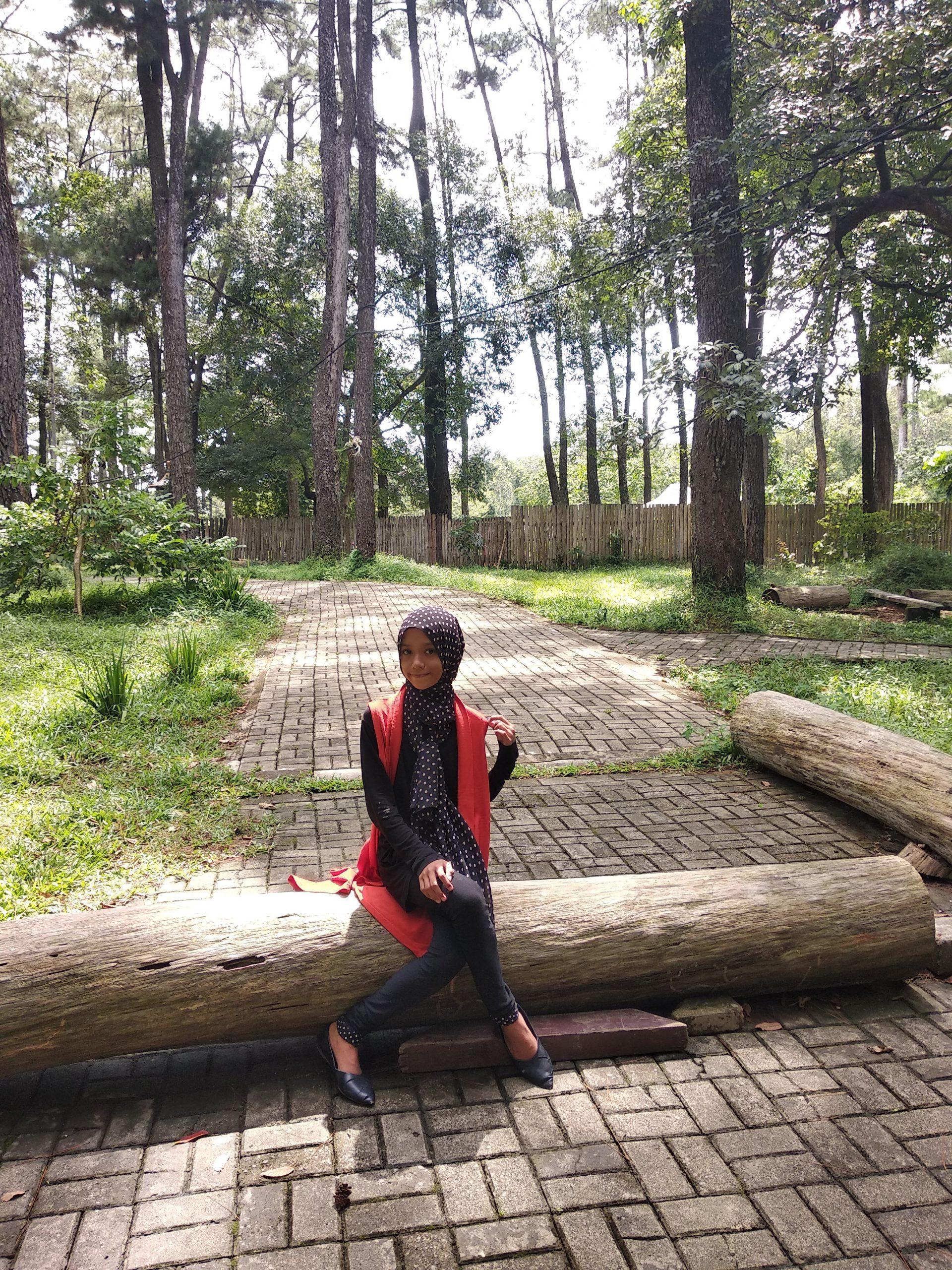 Wisata Alam Punti Kayu, Hutan Pinus Dalam Kota Terbesar di Indonesia